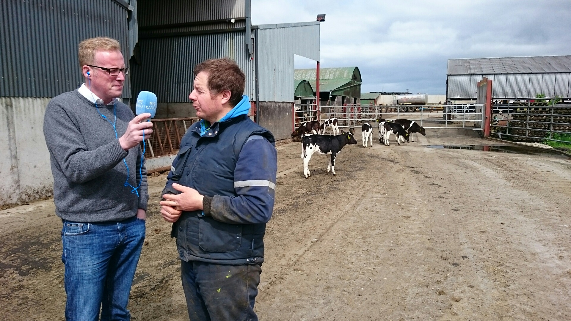 News: Herdwatch on Countrywide RTE Radio