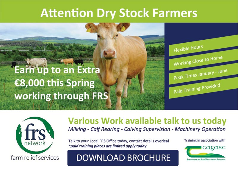 Farm Jobs for Dry Stock Farmers
