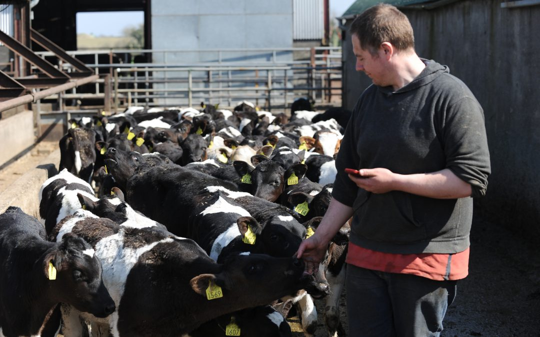 Article: The Apps that are keeping the Irish farmers content