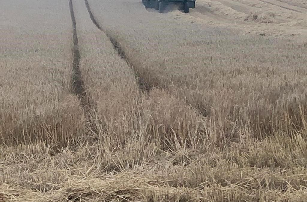 Planning In Advance Is Key For Tillage Farmers
