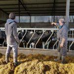farm-worker-irish